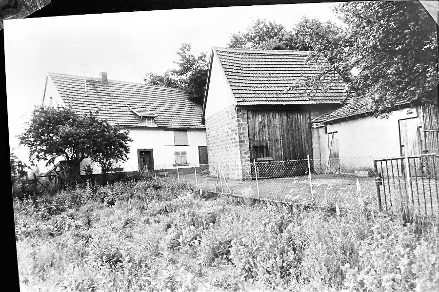 1980-falkenstein-repro-_0001